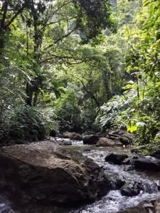 Cascada-chocolatal-Bahía Solano 1